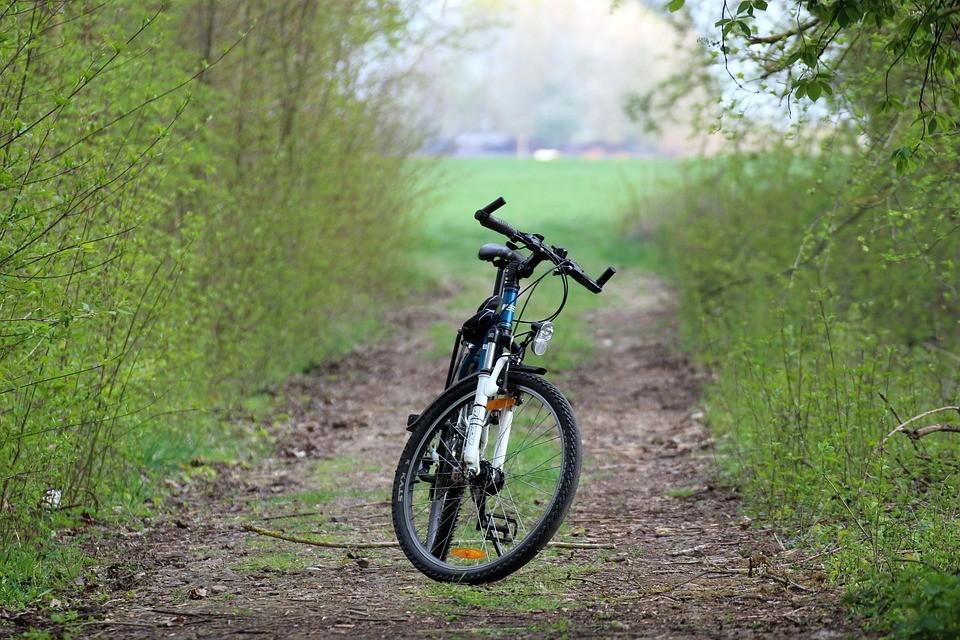 Велопробег во Льве Толстом пройдет 8 мая