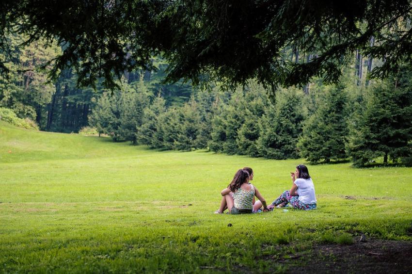 Врачи рекомендуют провести майские выходные на природе