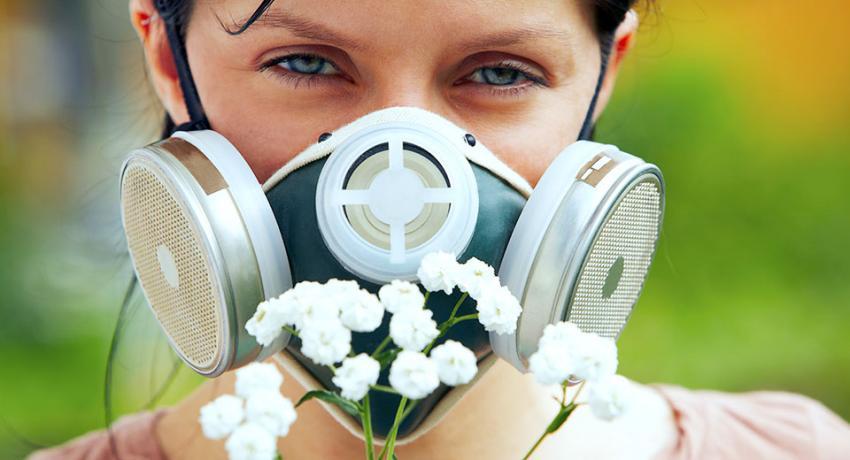 Эксперты Минздрава рассказали, как бороться с аллергией