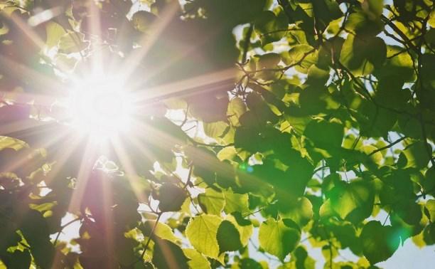 Погода в Туле 7 мая: жарко, сухо и малооблачно