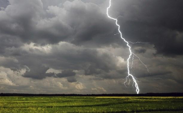 Погода в Туле 5 мая: до +25 градусов, гроза и порывистый ветер