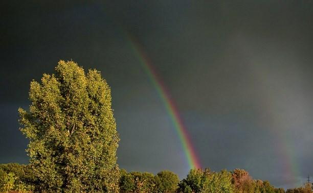 Погода в Туле 8 мая: до +27 градусов и дождь с грозой