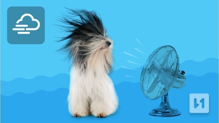 Синоптики вновь предупреждают жителей Кировской области о сильных порывах ветра
