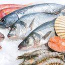 Свежезамороженная рыба и морепродукты оптом по выгодным ценам